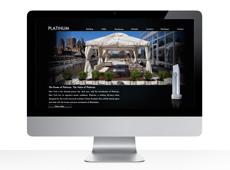 Platinum NYC
